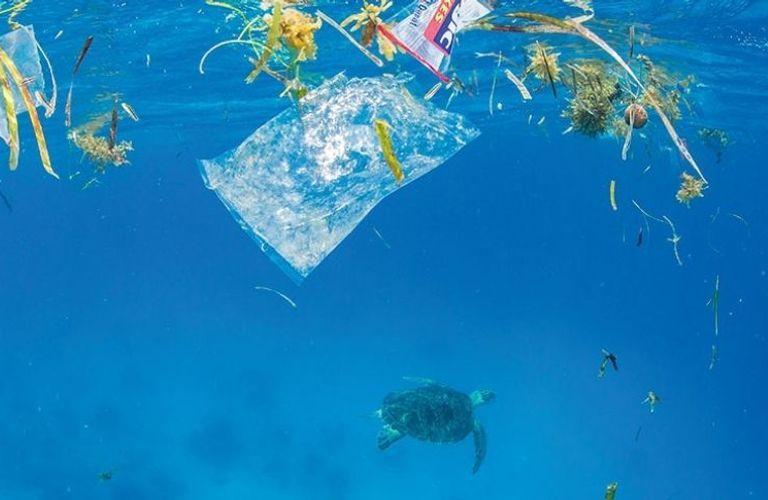 加拿大全国将于2021年禁止使用一次性塑料