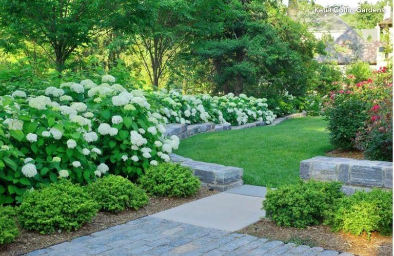如果你是园艺小白,那么这10个管理花园的Tips一定要收藏好!