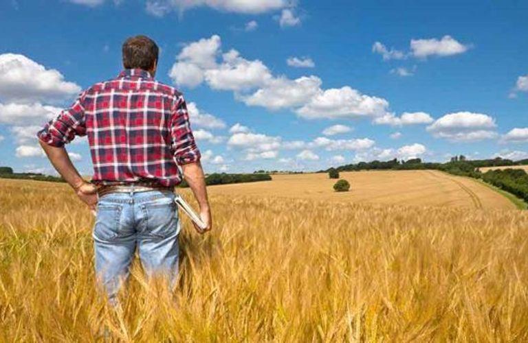 移民部准备今年开启农民工移民项目!